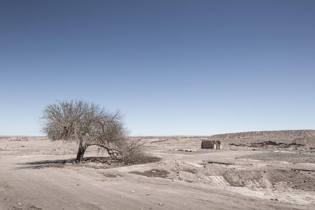 Antofagasta-8.jpg