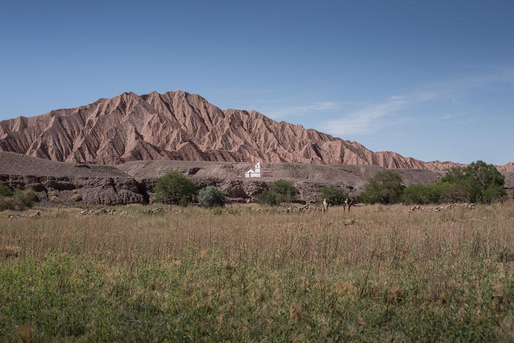 Antofagasta-15.jpg
